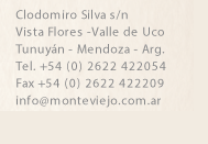 monteviejo.png
