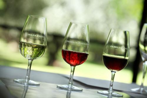 Degustar vinos en Casa del Visitante