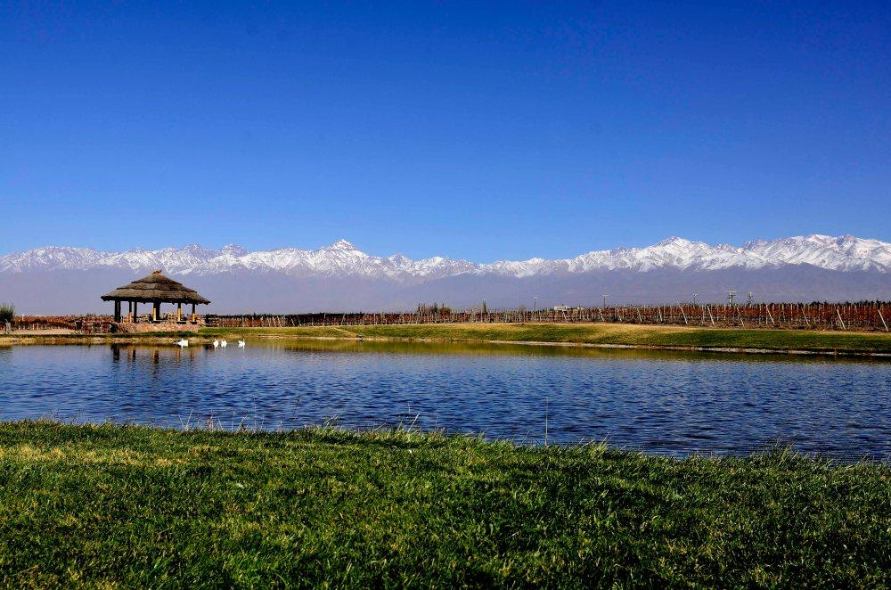 Domaine lago